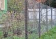 Забор из сварной сетки, фото 1